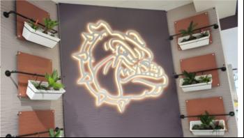 Shape of bulldog head led light hanging on wall indoors
